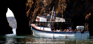 Tenby Island Cruise_compressed